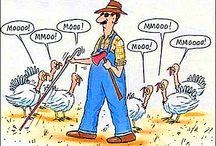 Funny Stuff / Randomness that makes me laugh. / by Sue Peterson