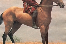 Volbloed paarden