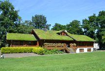 TOPGREEN Gründächer / Mit den TOPGREEN Elementen realisierte Dachbegrünungen