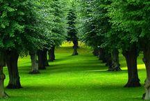 Čuda prirode / Ako ste zaljubljenik prirode, tada ste na pravom mjestu.