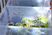 Tiny garden farm