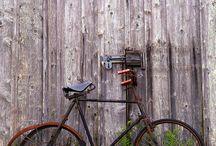 bicycles / by Leonie Lewis