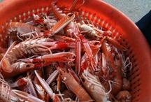 Knoydart Seafood