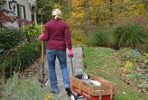 Planting Bulbs -- Pay it Forward! / Bulbs are a gardener's gift for the next season.