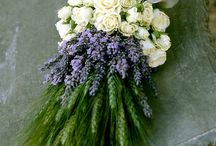 Wedding flowers / by Holly Whitehurst
