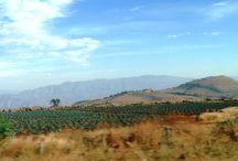 Krajobrazy / Zapierające dech w piersiach zdjęcia meksykańskiej ziemi...