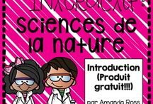 Ecole -> Sciences.