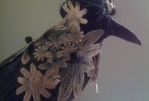 Crow adorned in lace  / Installation for fashion concept