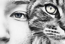 pics with cat