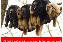 Türkçe Mizah Komik