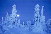 arctic winter.