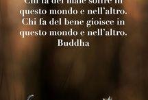 Buddha frasi