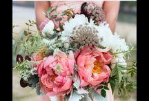 Blooms / The Joy of Flowers & Design