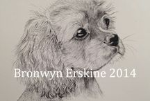 Bronwyn Erskine illustration 'pet portraits' (bronwynerskine.weebly.com)