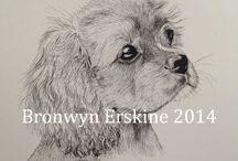 Bronwyn Erskine illustration 'pet portraits' (bronwynerskine.weebly.com)