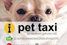 Προσφορές - Νέα Pet Taxi / Προσφορές σε τιμές Pet taxi