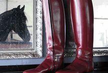 equestrian equipment <3