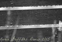 Summer Rain in Monochrome / Karen Griffiths Davis Photography
