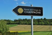 Vignoble de Champagne / Au pied du Parc Naturel de la Montagne de Reims et de part et d'autre de la Marne, les Vignobles Champenois façonnent un paysage à voir en toutes saisons pour la variation des couleurs. D'Epernay à Dormans, le cheminement tout au long des méandres de la Marne permet une approche très séduisante du vignoble.
