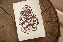 Christmas Card Ideas / by Amanda Dobbs