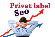 Seo resellers company