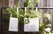 puutarha/ ideas for garden