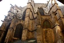 La Catedral  / by Rosa Aparicio