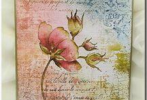 Cards Mir'acle Art van Miranda Degenaars