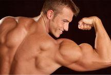 create your biceps bigger
