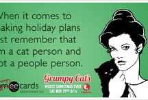 Grumpy Cat / by someecards