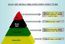 Six Sigma & Lean in Healthcare / by Kristy Taylor