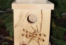 LINNUNPÖNTÖT JA RUOKINTA-AUTOMAATIT (Birdhouses and feeders of other Pinterest users) / Linnuille ja lepakoille (For birds and bats)