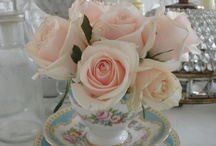 Tea Garden! / What's a Tea Cup without a Flower. / by Lynn-Marie Gandolfo