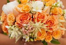 Orange: wedding and events
