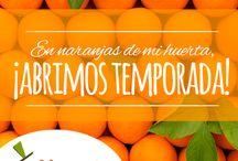 ¡Abrimos temporada! / En Naranjasdemihuerta.com hemos abierto temporada. Ya puedes acceder a las mejores naranjas, vivas donde vivas, a través de nuestra tienda online. www.naranjasdemihuerta.com
