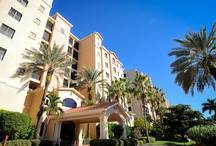 Paradise Properties in Fort Myers and Cape Coral