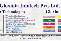 Gloxinia Infotech Pvt Ltd / Established on 2012 Gloxinia Infotech Pvt. Ltd. has entered with a strong motivation to sustain in dynamic world of Information Technology with its understanding about market need, knowledge, team work and aspiration to provide quality service in IT Sector. The company has its Corporate Office in New Delhi.