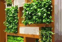 Kitchen - Inside Herb Garden / Healthy eating with inside Herb garden.