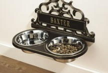 Pet Stuff / For my furry family