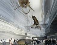NATURAL HISTORY MUSEUM DESIGN