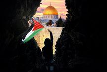 palestina - palestine