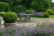 Glorious Gardens / by Mecox Gardens