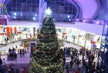 Árboles de Navidad / Diseñamos, suministramos, Instalamos y/o alquilamos elementos de Iluminación y decoración para árboles de navidad en espacios interiores y exteriores a gran escala para oficinas y espacio comerciales.
