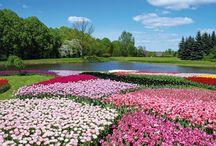Ogrody botaniczne Polska