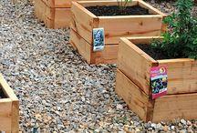 Ideas for Veggie garden