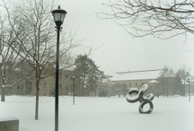 All Four Seasons / by Oberlin College