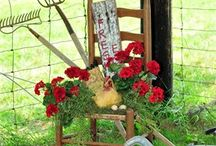 Outdoor and Garden goodness / by Debbie Booth