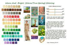 Descrierea paletelor de culori