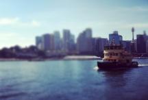 Sydney / by Hannah Law