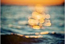 sunshine / by Tara Tadlock